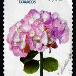 Briefmarke Hortensie