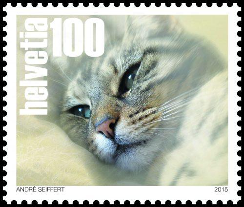 Briefmarke Katze Schweiz