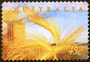 Weizen Getreide Australien