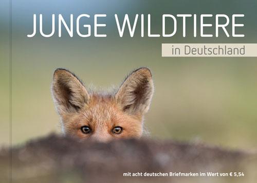 Tierbabys: Markenbuch Junge Wildtiere in Deutschland