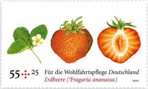 Duftbriefmarke Erdbeer