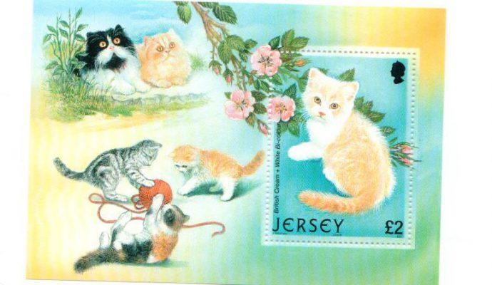 Briefmarke Katze Jersey