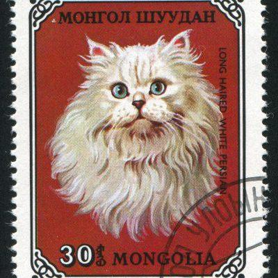 Briefmarke Katze Mongolei