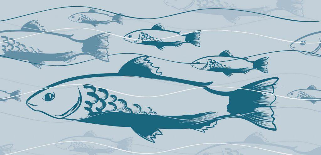 Fischiges