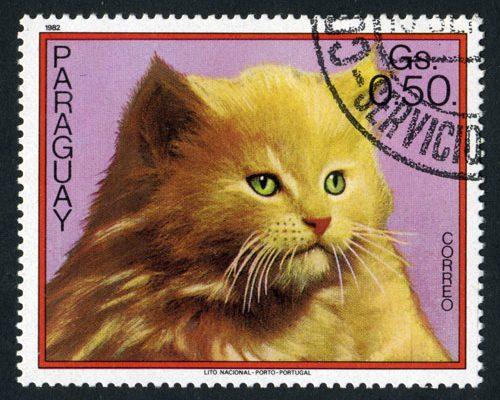 Briefmarke Katze Paraguay