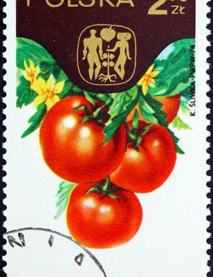 Gemüse Briefmarke Polen