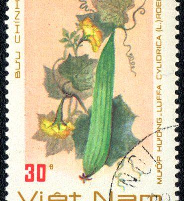 Gemüse Briefmarke Vietnam