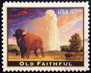 Bison in uramerikanischer Landschaft, ©spatuletail / shutterstock.com
