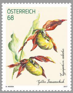 Gelber Frauenschuh Orchidee Briefmarke