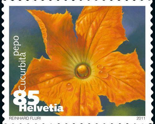 Gemüse Briefmarke Schweiz Zucchini