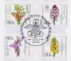 Heimische Orchideen Deutschland