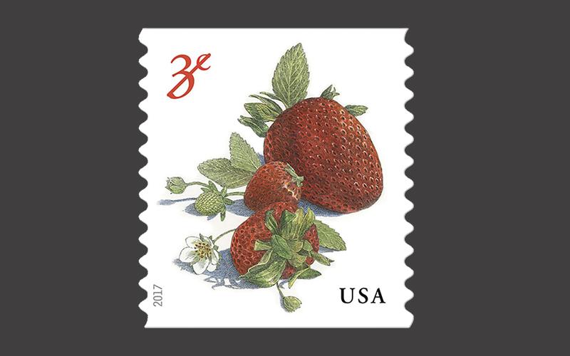 Erdbeeren (Fragaria x ananassa) sind äußerst schmackhaft und gesund noch dazu! (© USPS)