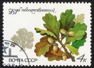Baum: Eiche auf Briefmarke