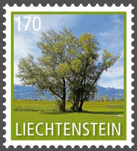 Baum: Zitterpappeln auf Briefmarke