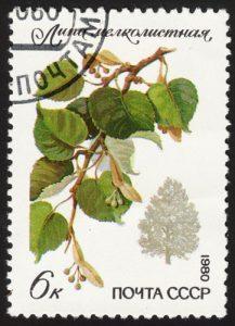 Baum Linde auf Briefmarke