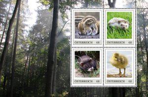 Junge Wildtiere auf Briefmarken aus Österreich