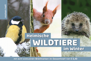 Wildtiere im Winter: Cover