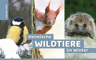 Wildtiere im Winter: Cover
