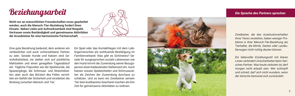 Haustiere: Spielgefährten und Kuschelpartner
