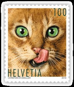 Katzen-Briefmarke aus der Schweiz