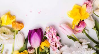 Der Frühling macht gute Laune