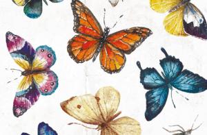 Zum Verschicken: Schmetterlinge auf Postkarten
