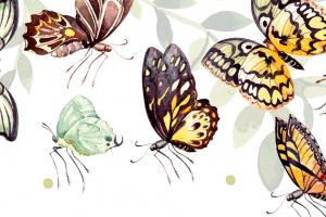 Schmetterlinge machen fröhlich