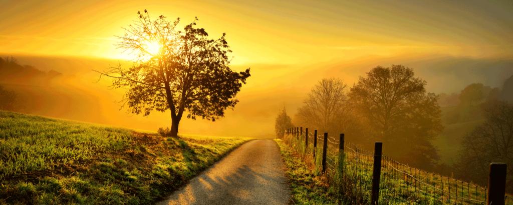 Pilgern: Der Weg ist ein Teil des Ziels