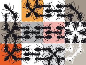 Peter Kogler: Ameisen im Briefmarkenalbum, 2012