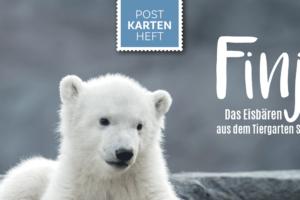 Finja, das Eisbärenmädchen aus Schönbrunn