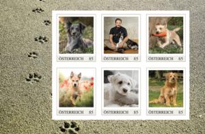 Hundebriefmarken im Martin Rütter Markenheft